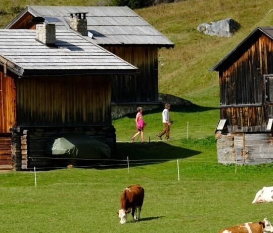 Pasture in the Conca del Fuciade