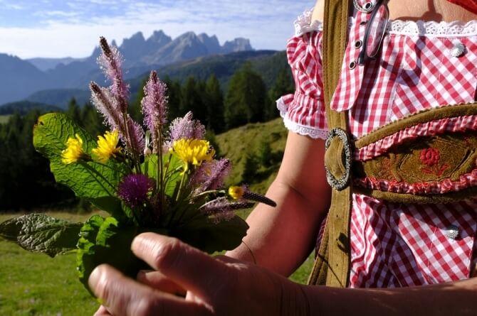 Fiori del Trentino