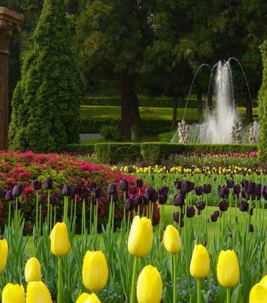 Giardino botanico di Villa Taranto