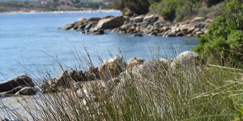 Mare Isola dei Gabbiani