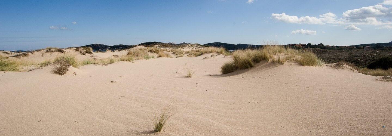 Le Dune all'Isola dei Gabbiani