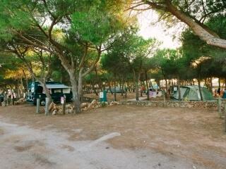 Area camping nella Pineta