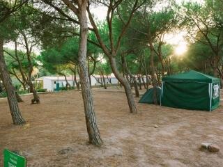 Zeltplatz auf dem Camping Torre del Porticciolo
