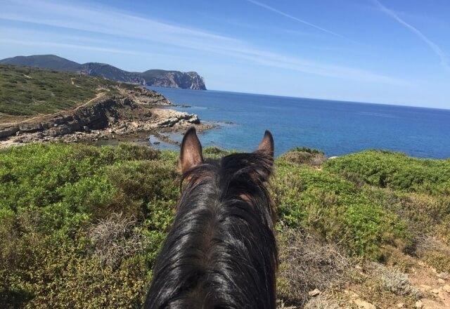 Horseback ride to the Torre del Porticciolo