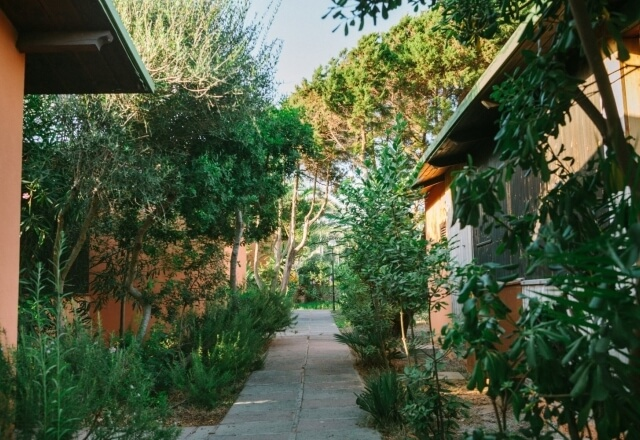 Pathway in the bungalows
