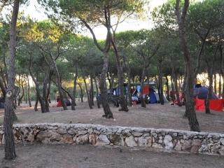 Campingzelte Torre del Porticciolo