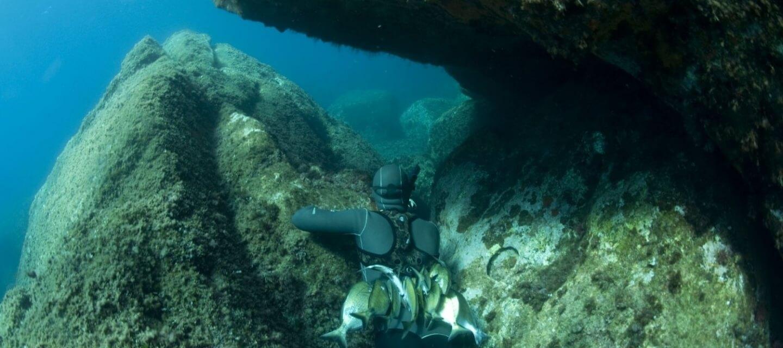 Sub nel mare della Torre del Porticciolo