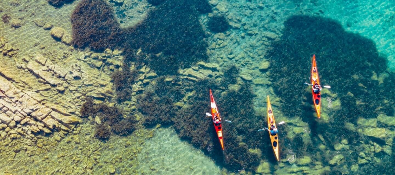 Kayak Torre del Porticciolo